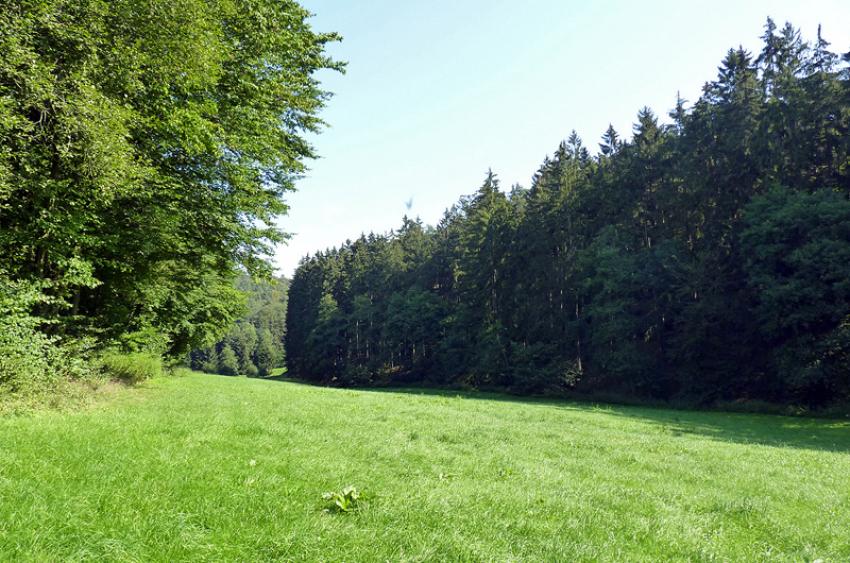 images/Natur_Slide/Natur_018.jpg