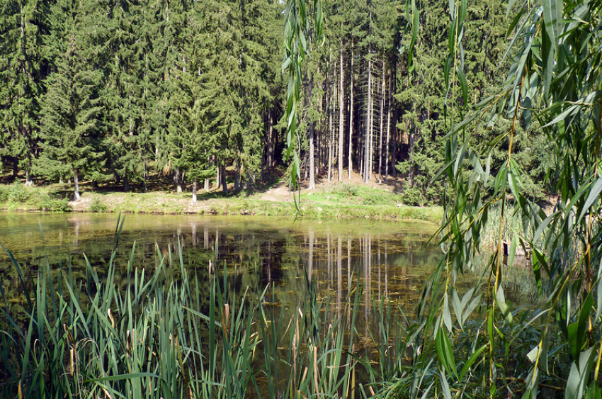 images/Natur_Slide/Natur_019.jpg