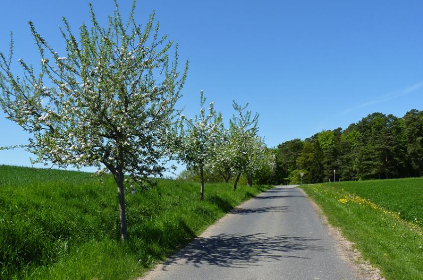 images/Radfahren_Slide/Radfahren_001.jpg