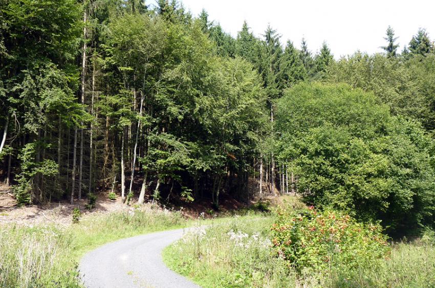 images/Radfahren_Slide/Radfahren_006.jpg