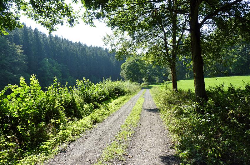 images/Radfahren_Slide/Radfahren_011.jpg