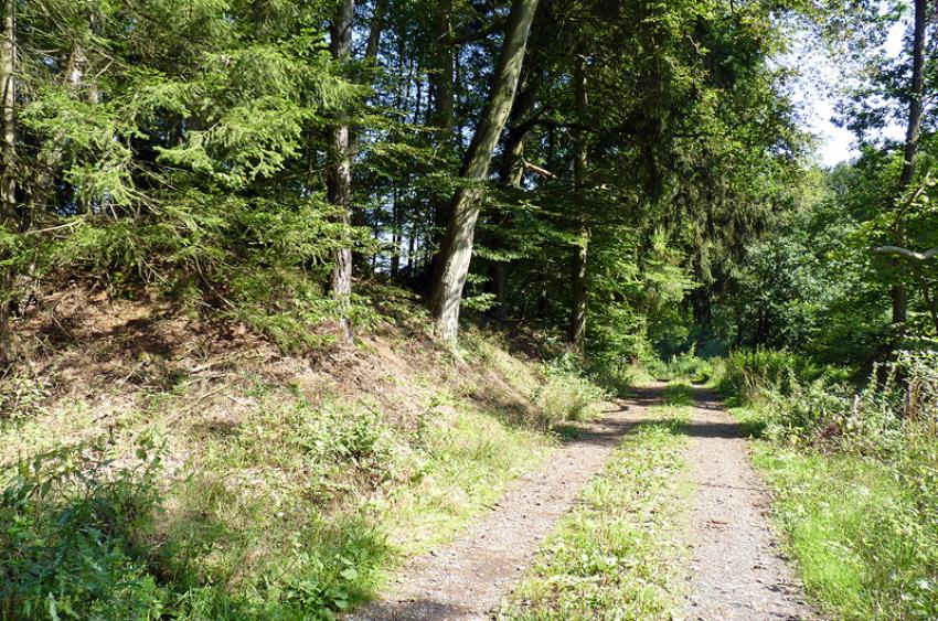 images/Radfahren_Slide/Radfahren_012.jpg