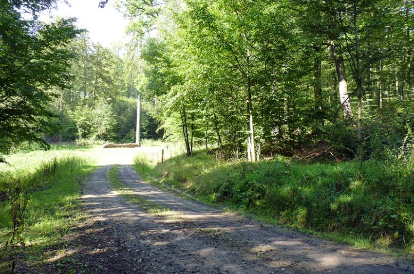 images/Radfahren_Slide/Radfahren_016.jpg