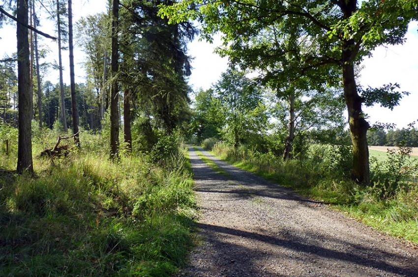 images/Radfahren_Slide/Radfahren_019.jpg