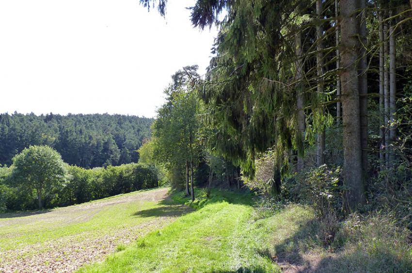 images/Wandern_Slide/Wandern_027.jpg